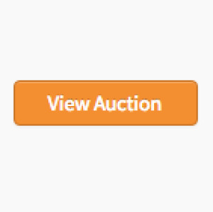 LARGE VINTAGE COIN COLLECTION (1 OF 2) ONLINE AUCTION