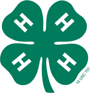 Harrison County 4-H Livestock Online Only Auction Catalog