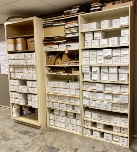 Shelving & Samples
