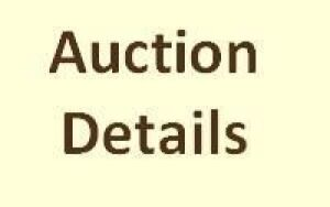 Auction Details