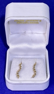 "10K ""Journey"" Design Diamond Earrings with Dual Notch Posts/Backs"