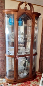 Modern Lighted Curio Glass Door Cabinet