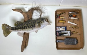 Largemouth Bass Mount and Lures