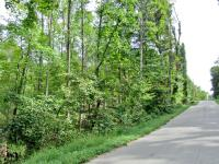 21 +/- ACRE VACANT WOODED LAND